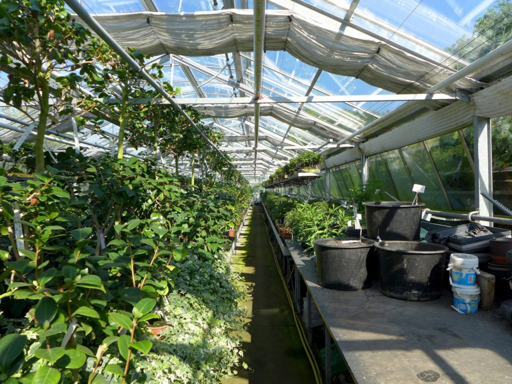 Gardening Stores U0026 Nurseries: Asking For Dead Plant Pots
